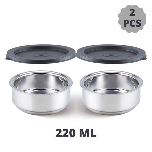 Double Wall Stainless Steel Round Container Lunch Box - 220 ML, Set of 2