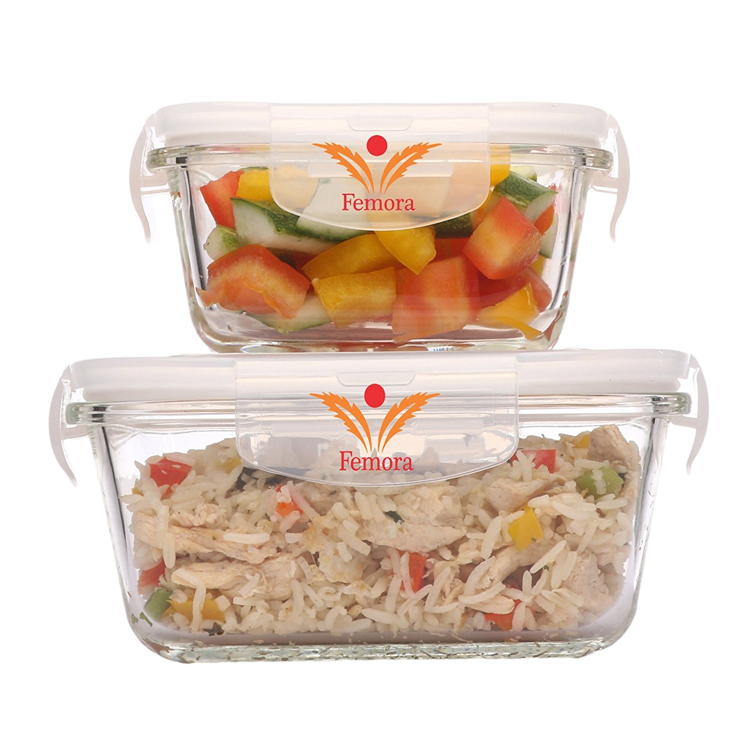 Femora Borosilicate Glass Square Container with Air Vent Lid 300 ML ,500ML Set of 2