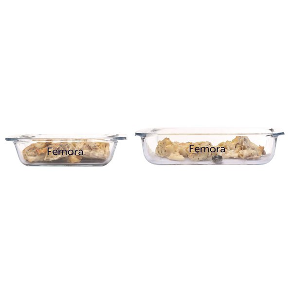 Femora Borosilicate Baking Square Dish 900 ml,1700ml- Set Of 2
