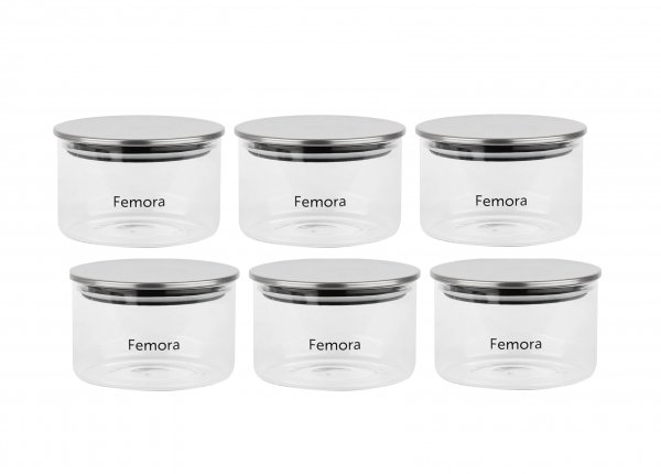 Femora Borosilicate Glass Air Tight Trend Jars with Silver Metalic Lid for Kitchen, 550ml Set of 6
